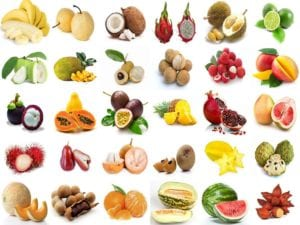 30 most popular fruits in Phuket